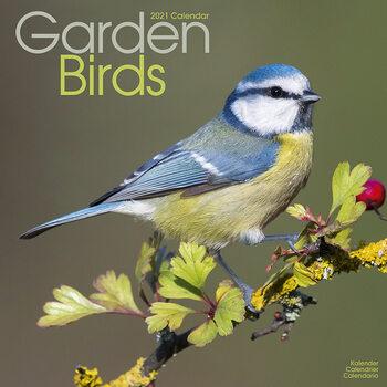 Kalendář 2021 Zahradní Ptáci