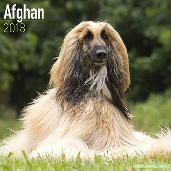 Afghan Kalendarz 2018