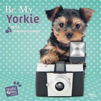 Be My Yorkie Kalendarz 2017