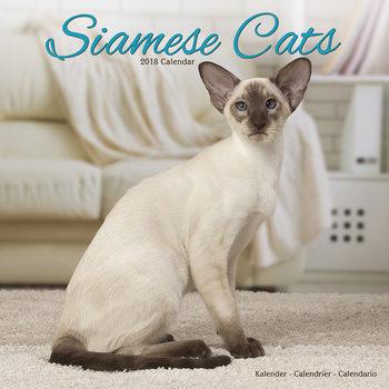 Cats - Siamese Kalendarz 2018