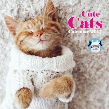 Cute cats Kalendarz 2017