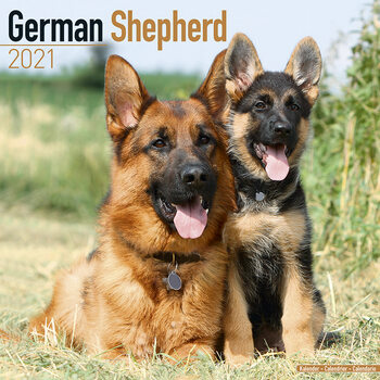 German Shepherd Kalendarz 2021