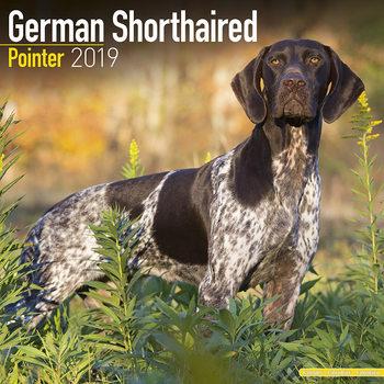 German ShortHair Pointer Kalendarz 2019