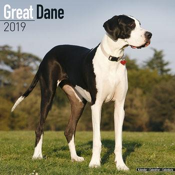 Great Dane Kalendarz 2019