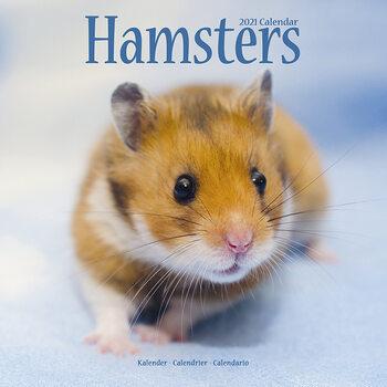 Hamsters Kalendarz 2021