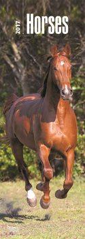 Horses Kalendarz 2017