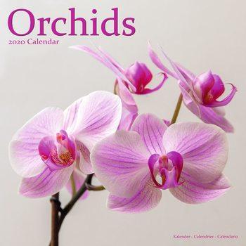 Orchids Kalender 2021
