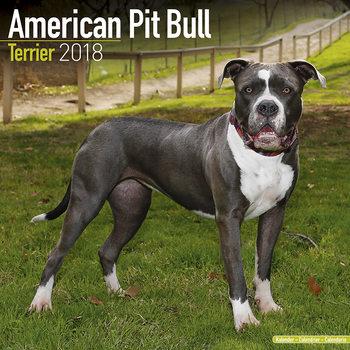 American Pit Bull Terrier Kalender 2018