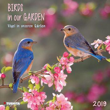 Kalender 2019  Birds in our Garden