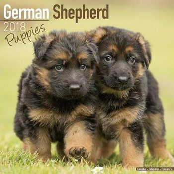 Kalender 2018 German Shepherd