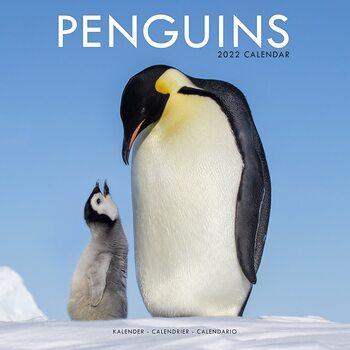 Kalender 2022 Penguins