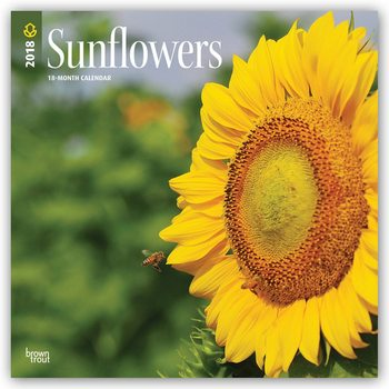Sunflowers Kalender 2018
