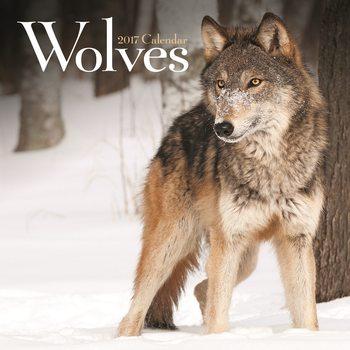 Kalender 2017 Wölfe