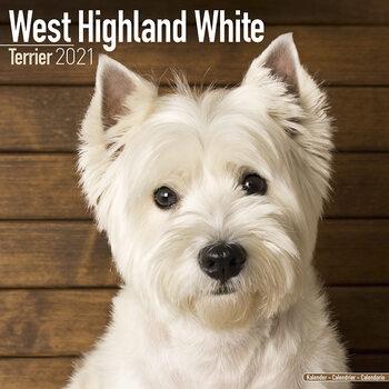 West Highland Terrier Kalender 2021