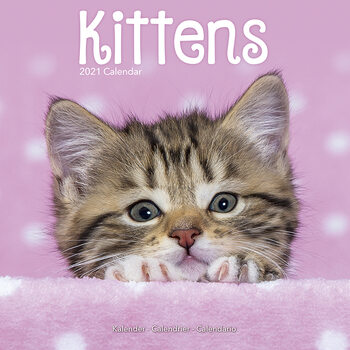 Ημερολόγιο 2021 Kittens