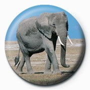 Kitűzők ELEPHANT