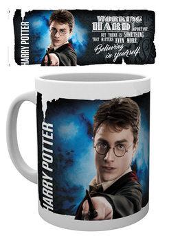 Harry Potter - Dynamic Harry Kubek