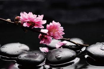 Kunst op glas Zen - Pink Orchid 1