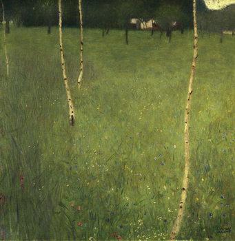 Farmhouse with Birch Trees, 1900 Kunsttrykk