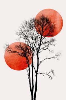 Illustrasjon Sun and Moon hiding