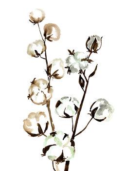 Illustrasjon Watercolor cotton branches
