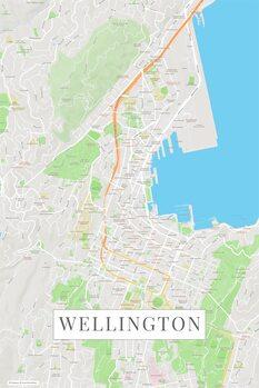 Kart over Wellington color