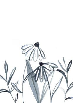 Illustrasjon Echinacea meadow