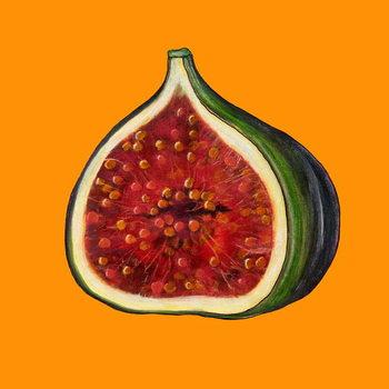Fig on orange Kunsttrykk