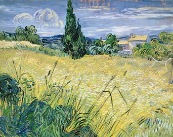 Green Wheatfield with Cypress, 1889 Kunsttrykk