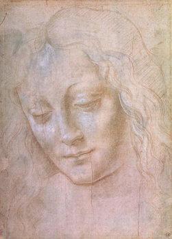Head of a woman Kunsttrykk