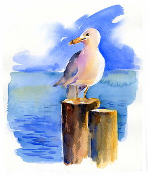 Seagull on dock, 2014, Kunsttrykk