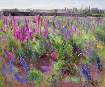 The Delphinium Field, 1991 Kunsttrykk