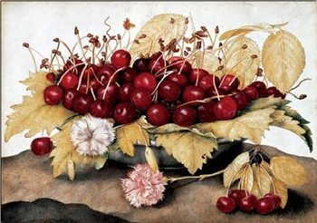 Cherries and Carnations Kunsttrykk