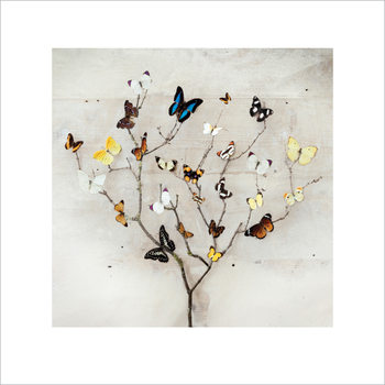 Ian Winstanley - Tree of Butterflies Kunsttrykk