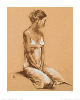 T. Good - Silk IV Kunsttrykk
