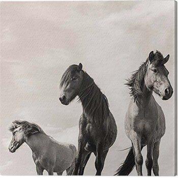 Billede på lærred Carys Jones - The Three Amigos