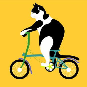 Billede på lærred Cat on a Brompton Bike