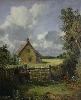 Billede på lærred Cottage in a Cornfield