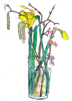 Billede på lærred Daffodils