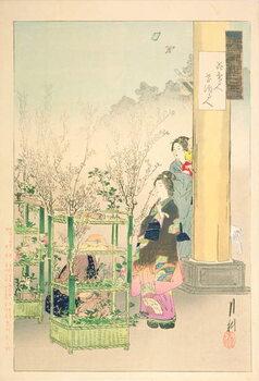 Billede på lærred Flower Seller