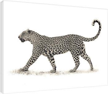 Mario Moreno - The Leopard Billede på lærred