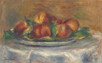 Billede på lærred Peaches on a Plate, 1902-5