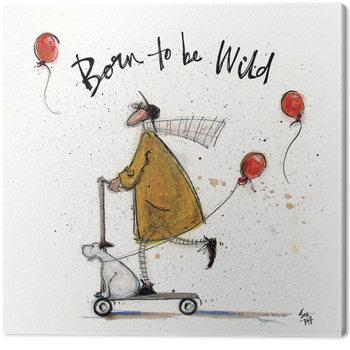Sam Toft - Born to be Wild Billede på lærred