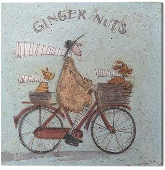 Sam Toft - Ginger Nuts Billede på lærred