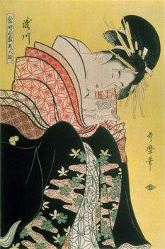 Takigawa from the Tea-House, Ogi Billede på lærred