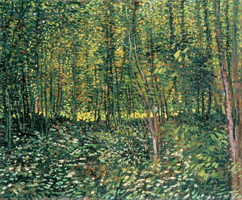Trees and Undergrowth, 1887 Billede på lærred