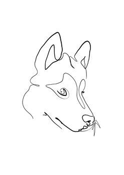 Billede på lærred Wolf