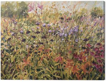Anne-Marie Butlin - Field with Lillies Billede på lærred