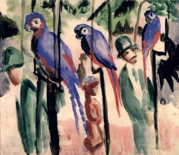 Blue Parrots Billede på lærred