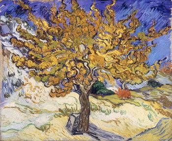 Mulberry Tree, 1889 Billede på lærred